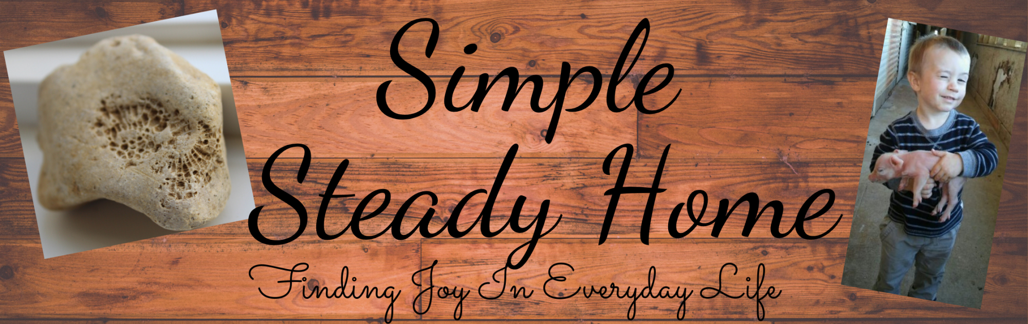 Simple Steady Home